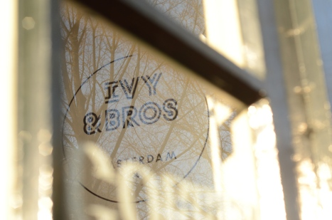 IVY and BROS